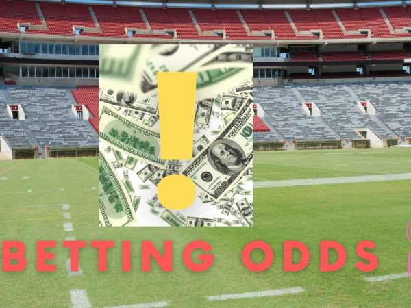 Things to consider betting odds before use